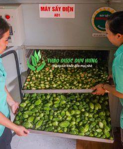 cong-doan-say-kho-qua-rung